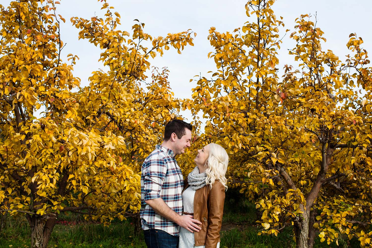 Fall Apple Orchard Engagement Photo Session Saint Paul