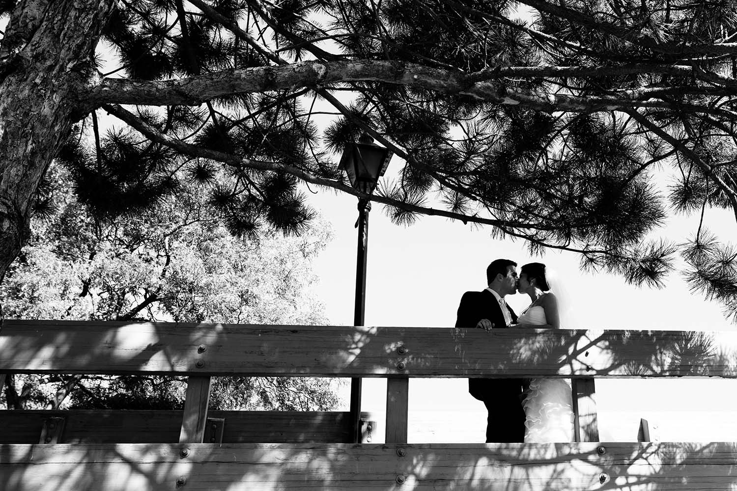 Black and white bride groom kissing bridge pine trees Minneapolis Wedding Photographer