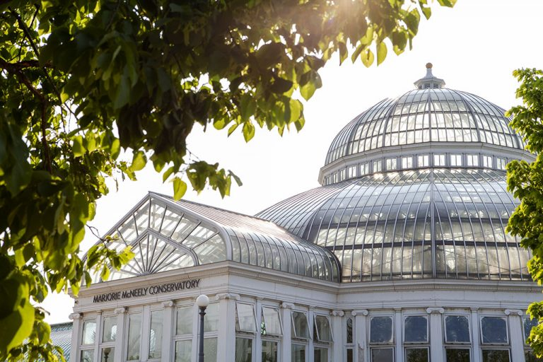 St Paul Wedding Photographer, Como Park Conservatory St Paul, Minnesota Wedding Photography, Wedding Venue